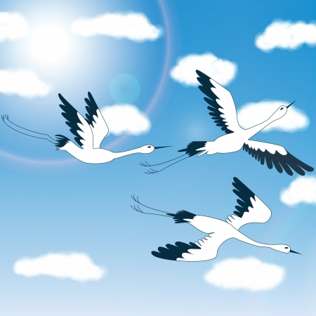 birds - blue sky   clouds - Illustration Illustration