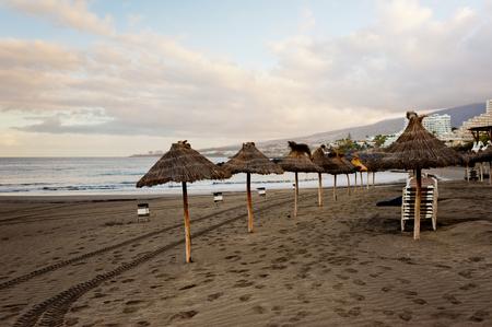 Sandy beach with sun umbrellas at sunset. Tenerife island.