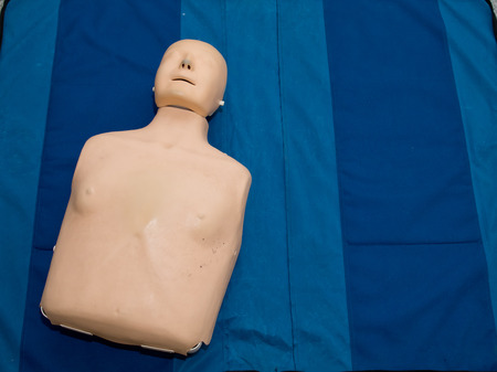 Realistic training simulator dummy mannequin doll for medical procedure, first aid, CPR, auscultation, etc.