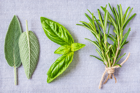 Fresh aromatic herbs, sage, rosemary and basil bunches top view.