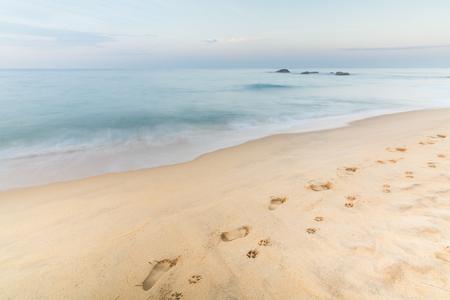 Footprints of Man and Dog on the Sand in Hikkaduwa, Sri Lanka