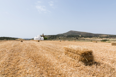 Rye field with bales of hay in Naxos island, Greece. White orthodox church on the background Stock Photo