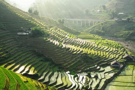 Rice terraces of Sapa with wooden houses at sunset in Lao Cai province, Vietnam.