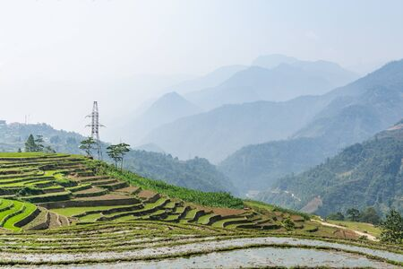 Rice terraces of Sapa with mountains on background in Lao Cai province, Vietnam. Tonal perspective.