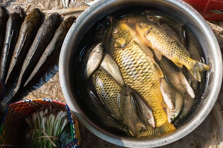 Inle lake fish in a bucket on the market of Indein, Myanmar. Banque d'images