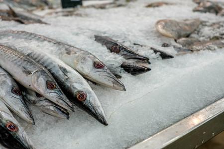 fish in ice bucket in supermarket. frozen fish. Fresh fish in market. Bunch of raw frozen fish on ice
