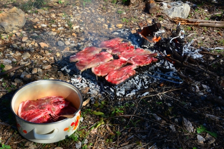 Bbq grill of pork meat in wilderness photo