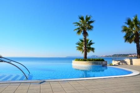 Blau endlosen Pool mit Palmen