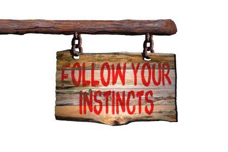 instincts: Follow your instincts motivational phrase sign on old wood with white background