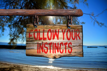 instincts: Follow your instincts motivational phrase sign on old wood with blurred background