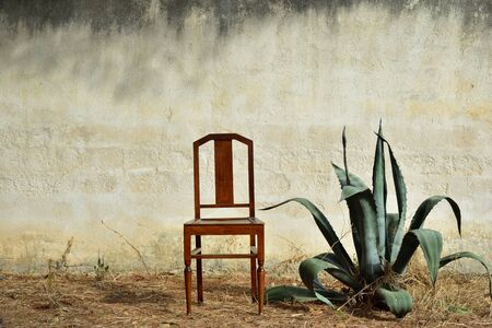 Background image of an old rustic plastered wall outdoors, in front of which an old chair stands next to an agave in the summer on dry earth. Banco de Imagens