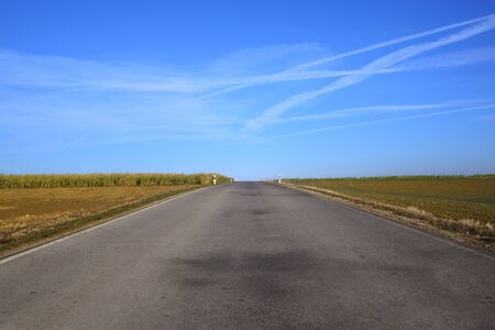 A gray road with spotty pavement stretches straight to the horizon with fields in winter that are brown and empty against a blue sky with clouds Banco de Imagens