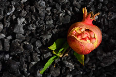 A small burst pomegranate lies on charcoal against a dark background