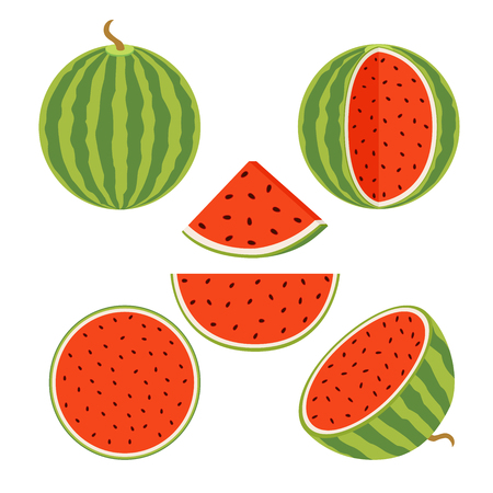 Set of juicy whole watermelons and slices in flat style. Watermelon illustration.