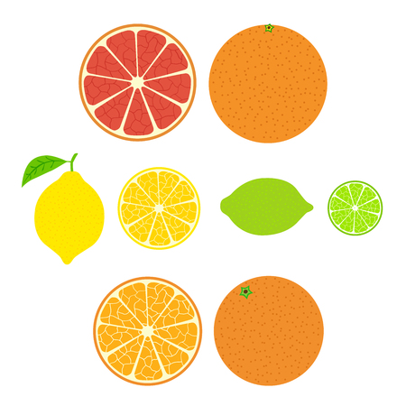rinds: Collection of citrus. Slices of orange, lemon, lime and grapefruit, icons set, colorful isolated on white background, illustration.
