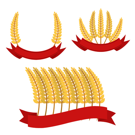 Bunches of wheat with ribbons, frames. Flat vector style. Organic food. Illustration