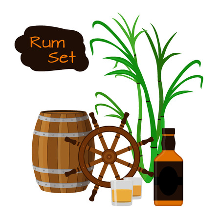 sugar cane: Rum set. Flat style design. Vector illustration. Sugar cane, shots, rum bottle and the wheel.
