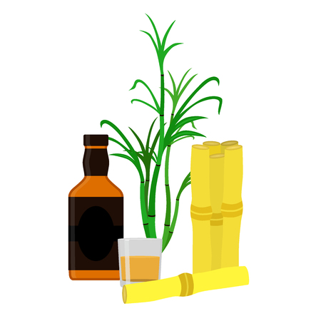 scotch whisky: Rum bottle, sugar cane, glass, shot. Flat vector style Organic drink