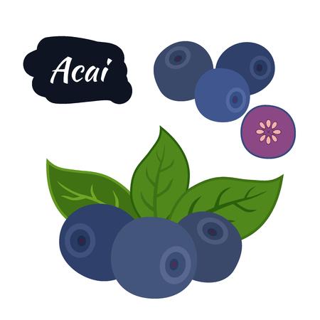 amazon: Super food acai berry. Exotic fresh amazon nutrition. Flat style