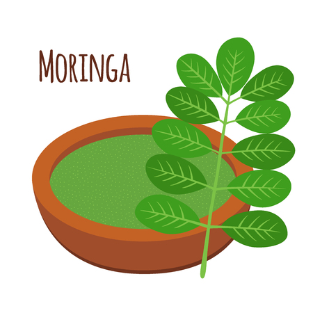 Moringa, vegetarian superfood. Healthy nutrition. Herb, vegetable, powder, tree in flowerpot. Cartoon flat vector style. Illustration