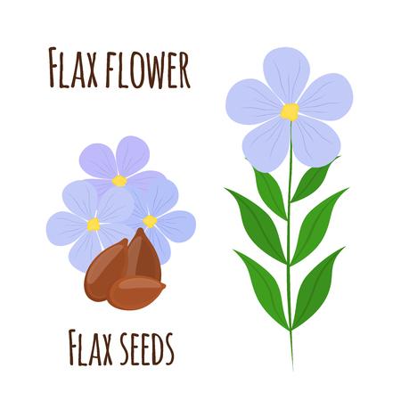 Flax flower and seeds. Vegetarian food, natural linen. Cartoon flat style.