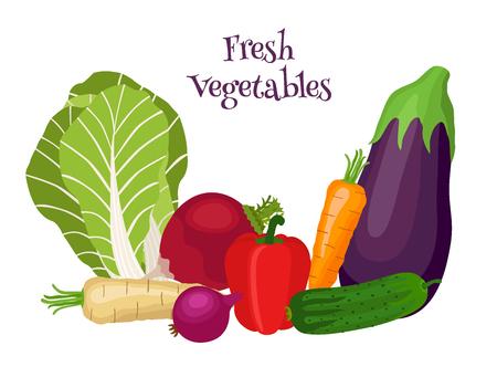 Fresh vegetables - bok choy, eggplant, carrot, cucumber, onion, bell pepper. Vegetarian food. Cartoon flat style. Illustration