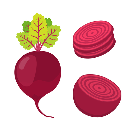borscht: Beetroot and slices. Cartoon flat style. Vegetarian fresh raw food.