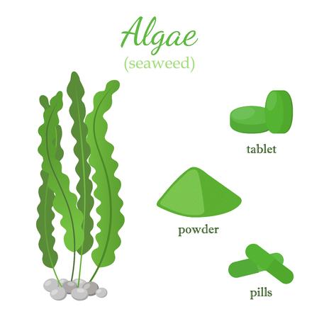Green seaweed - healthy spirulina, algae. Cartoon flat style. Vegetarian nutrition in pills, powder, tablets. Ilustrace