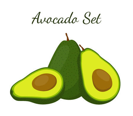 Avocado whole and slice. Tropical summer fruit. Made in cartoon flat style Çizim