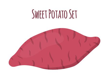 Brown batat, sweet potato. Organic healthy vegetable. Fresh natural root. Made in cartoon flat style Çizim
