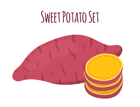 Brown batat, sweet potato and slices. Organic healthy vegetable. Fresh natural root. Made in cartoon flat style Illustration