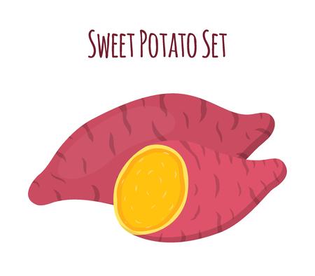 Brown batat, sweet potato, Organic healthy vegetable  イラスト・ベクター素材