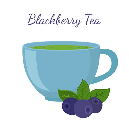 red currant: Blackberry tea in cup with berries. Healthy organic natural fruit tea. Vector illustration. Made in cartoon flat style