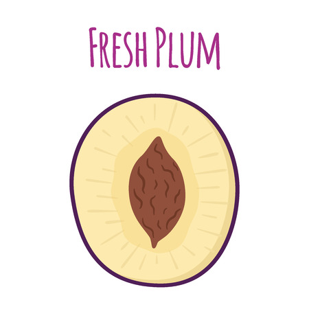 Half of ripe purple plum. Made in cartoon flat style. Vector illustration Ilustração