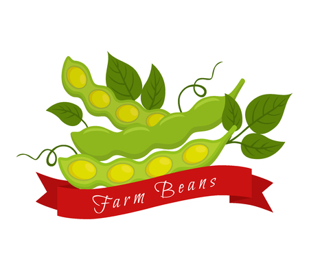 Soy beans label, logo. Farm product, vegetarian food. Made in cartoon flat style. Vector illustration Illustration