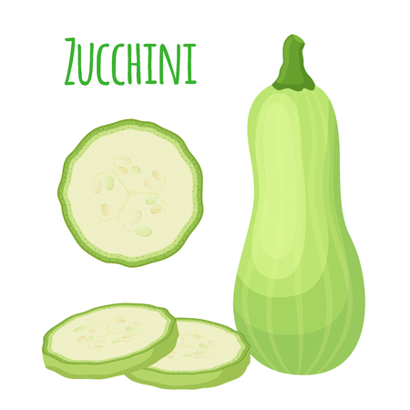 Fresh zucchini squash, vegetarian vegetable. Whole and slices. Made in cartoon flat style. Vector illustration Ilustracja