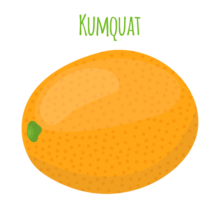 Tropical kumquat, exotic fruit. Vegetarian nutrition. Made in cartoon flat style. Vector illustration