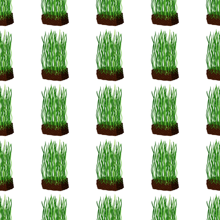 Barley grass and wheat seamless pattern on white background. Illustration
