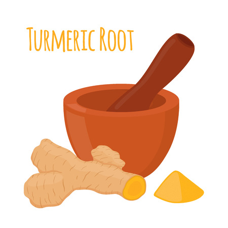 Turmeric root, pestle, mortar. Herbal powder, spice. Made in cartoon flat style. Vector illustration Illustration