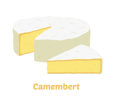 Vector camembert cheese block and piece. Slice, chunk in cartoon flat style. Farm market product for label, poster, icon, packaging. Dairy product