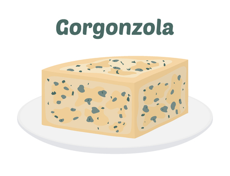 Vector gogronzola, Italian blue cheese on plate, made from unskimmed cow's milk. Made in cartoon flat style for internet, design  イラスト・ベクター素材
