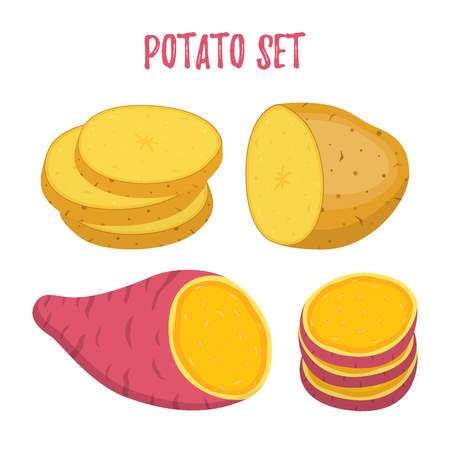 Set of potato vector illustration. Violet sweet, brown potatoes and slices in cartoon flat style. Vettoriali