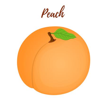 Vector natural organic fruit - peach with leaf. Tasty fresh vegetarian food. Whole juicy dessert in cartoon flat style.