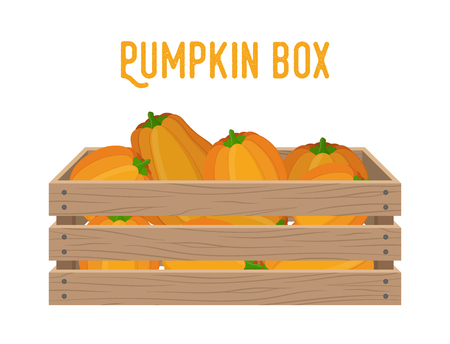 Vector box with pumpkins, grocery basket with garden products. Storehouse crate. Wooden container for vegetables, products. Delivery, transportation package. Banque d'images - 111671145