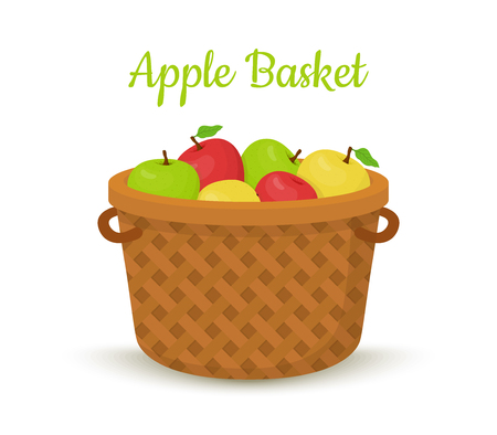 Vector brown basket with apples. Bright fruits in bucket, wooden container in cartoon style.
