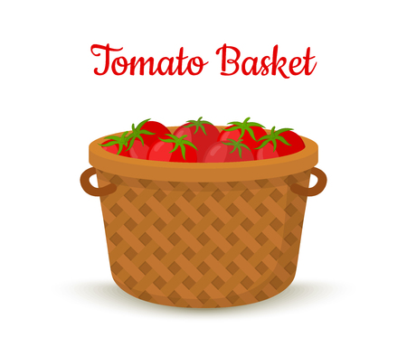 Vector brown basket with red tomatoes. Bright vegetables in bucket, wooden container in cartoon style.