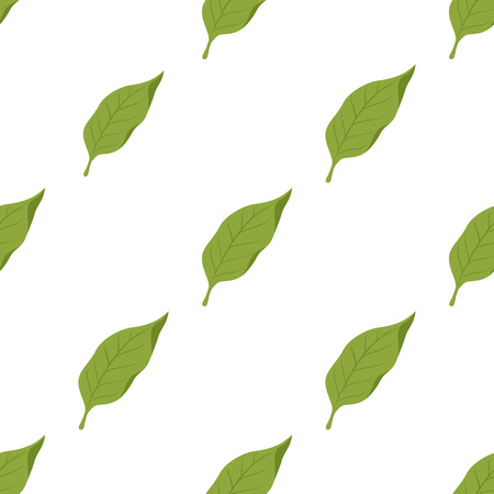 Vector seamless pattern with green tobacco leaves, smoking plant with nicotine for cigarettes.