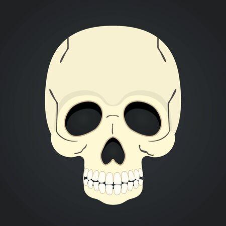 Vector skull, dead head isolated on black background.