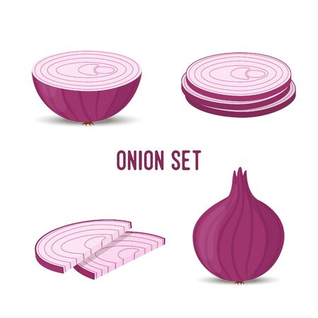 Vector onion set, slices and whole purple vegetable