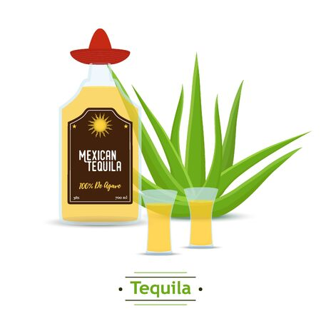 Vector Mexican tequila - glass bottle, agave with shots